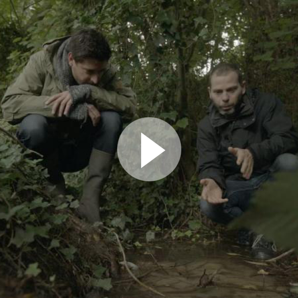 Riolering-reportage-video